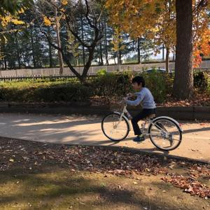 自転車練習は、この先まだつづく