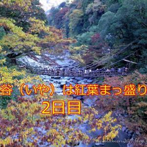 今年最後のお泊まりツーか?四国は祖谷渓へ行ってきた件。2/2