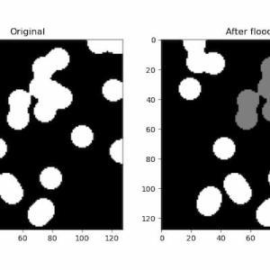 [scikit-image] 83. flood_fillによる特定の領域の塗りつぶし(skimage.segmentation.flood_fill)