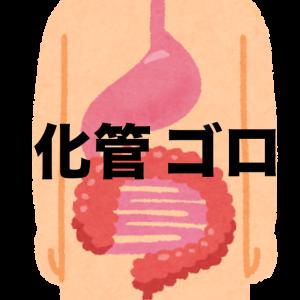 A消化管 ゴロ集
