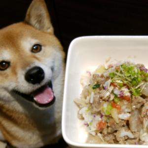 今日のSOY飯:牛すじゴハン