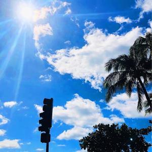 〜ハワイに長期滞在する!!〜下調べ【第1弾】