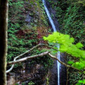 榛名神社・みすずの滝