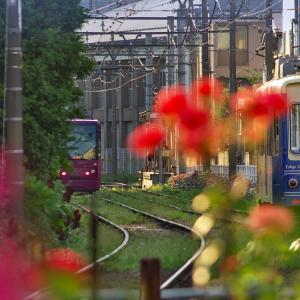 都電荒川線・三ノ輪駅(2)