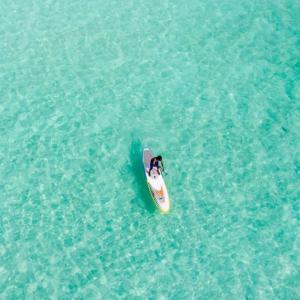 【海外ナビ】モンサンミッシェル湾のムール貝