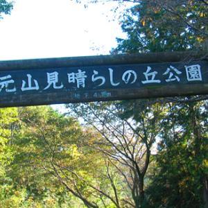 仙元山 山頂 見晴らしの丘公園 リハビリ散歩