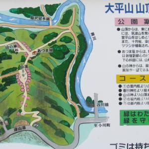 2020.1月9日 嵐山 大平山リハビリ トレッキング