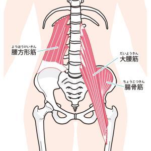 デスクワークで足が重たい:対処法は腸腰筋の筋トレで軽い体をGET
