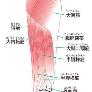 腸脛靭帯固い人が多すぎ!腸脛靭帯炎にならない予防を!ストレッチ・筋膜リリースを紹介します