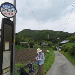 256.古宝山から宝塚北SAを歩く