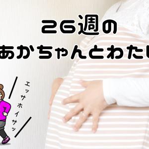 超肥満妊婦が妊娠26週(7か月)の妊婦検診に行ってきました