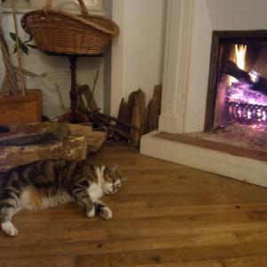 今年は気候もおかしいフランス もう暖炉???