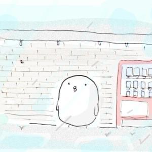 【一箇所掃除】玄関収納と雨宿り