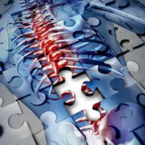 脊髄損傷でも歩ける時代への一歩【脳波を読み取るスーツの開発】