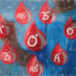 【高校生物の物語】血液型と性別の決まり方 【身近な遺伝】