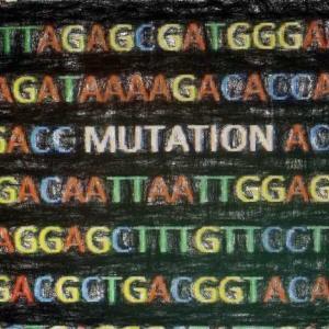 がんの体細胞変異 (somatic mutation) を解釈する 【リソースを紹介】