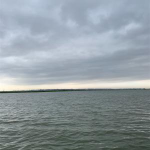12月9日霞ヶ浦水系バス釣り。初冬の霞ヶ浦水系は中層狙いか!?鰐川など。