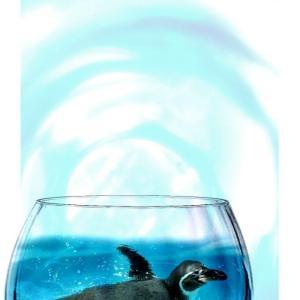 コップの中を泳ぐペンギンさんの写真コラージュ素材です。