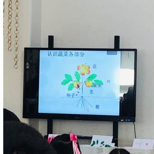 【中国の幼稚園】餃子作りと英語劇の発表会。
