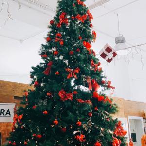 Buon Natale♡♡♡
