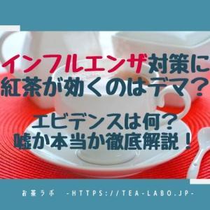インフルエンザ対策に紅茶が効くのはデマ?エビデンスは何?嘘か本当か徹底解説!