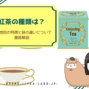 紅茶の種類は?生産地別の特徴と味の違いについて徹底解説
