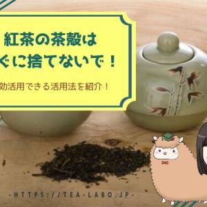 紅茶の茶殻はすぐに捨てないで!有効活用できる活用法を紹介!