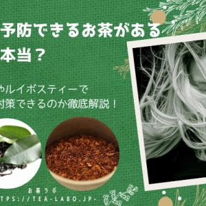 白髪予防できるお茶があるって本当? 緑茶やルイボスティーで白髪対策できるのか徹底解説!