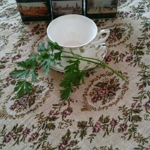 つれづれに書いてみました....朝の紅茶とお野菜