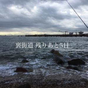 平日裏街道:11/13(水)須磨浦公園ベランダ