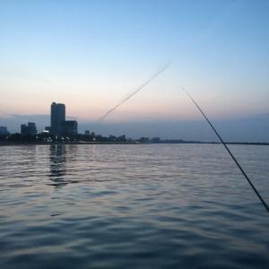 豆アジのサビキ釣りを極める⑤:竿の種類と長さと調子