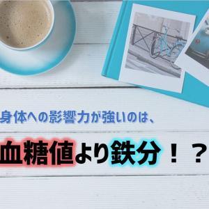 【私的疑問】血糖値よりフェリチン値(鉄分)の方が重要!?|根拠もあった!