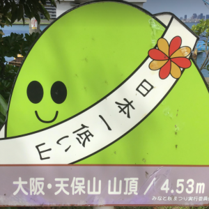 日本で1番低かった山 天保山に登山!!