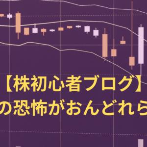 【株初心者ブログ】仕手株の恐怖がおんどれらを襲う