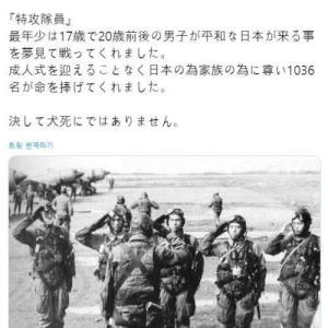 [韓国の反応]神風を美化する日本人 韓国ネット民「平和を夢見て特攻をするなんて矛盾の塊だろうに」