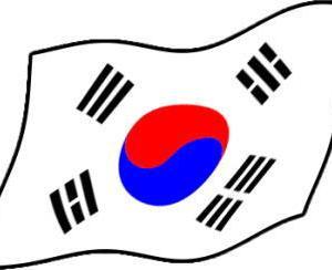 [韓国の反応]新宿の電光掲示板に現れた巨大猫に韓国人もびっくり[韓国ネット民]うわあ、本物の猫かとおもったよ(ぶるぶる)