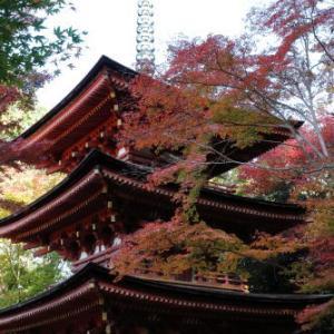 2019年11月 京都①≪浄瑠璃寺≫