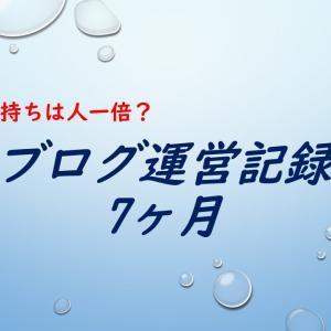 【ブログ運営記録7ヶ月】雑記ブログでの収益、PV数、記事数!