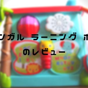 【知育玩具のレビュー】0歳から使えるバイリンガル ラーニング ボックス