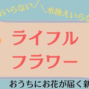 【花の定期便】ライフルフラワーの口コミ!花瓶や水換えもいらない