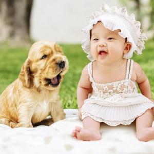 【赤ちゃんとペット】一緒でも大丈夫?楽しく暮らす為の対策4選