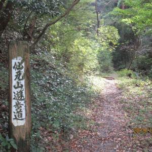 仙元山~小倉城址~大平山