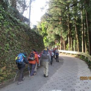 青梅 天狗岩       東京ハイキング協会