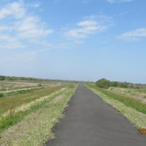 利根川堤防沿い 周辺散歩