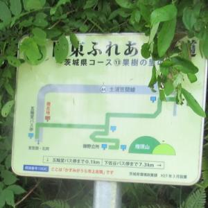 千代田アルプス 小町山 宝篋山