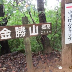 金勝山 官ノ倉山