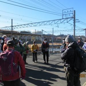 湘南吾妻山                 東京ハイキング協会