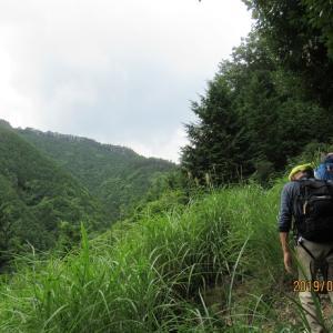 天覚山        東京ハイキング協会