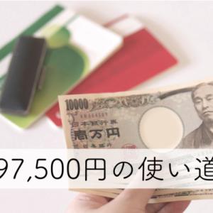 97,500円をどう使うかが、青色申告をするかどうかのポイント