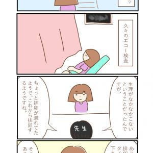 【D37】これから排卵するらしい…!!!